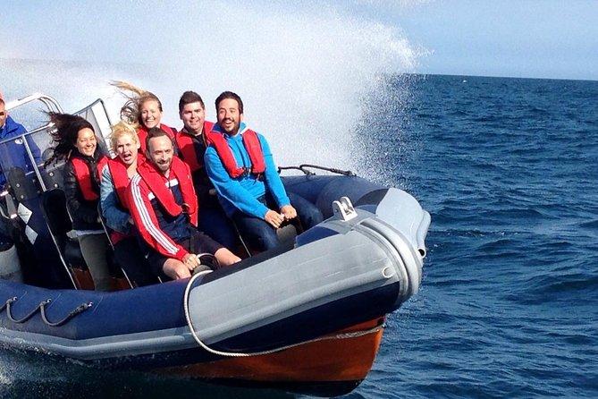 Private Gruppen-Motorbootfahrt in Brighton