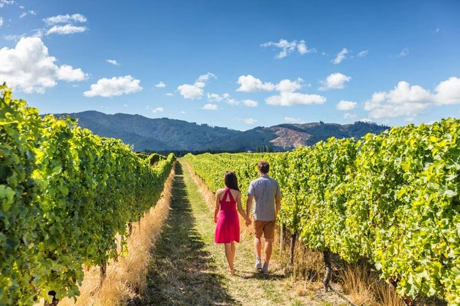 Queenstown Wine and Cardrona Distillery Tour