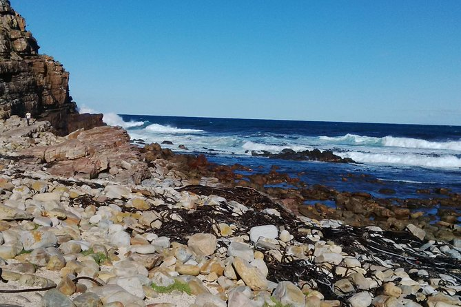 Full-Day Private Cape Point Tour from Cape Town photo 2