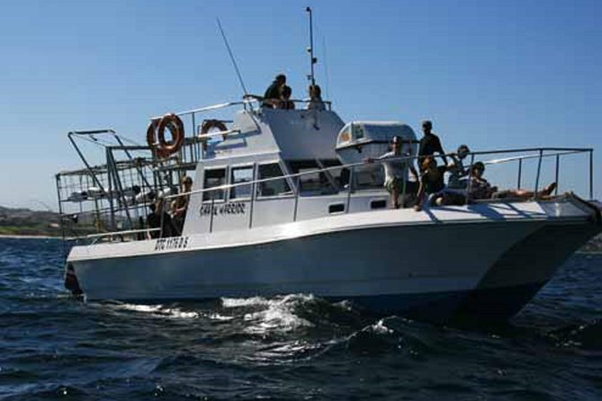 Overnight Shark Cage Diving Excursion for Small Groups in Mossel Bay photo 3