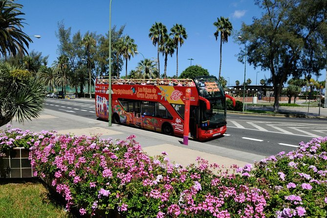 City Sightseeing Las Palmas de Gran Canaria Hop-On Hop-Off Bus Tour