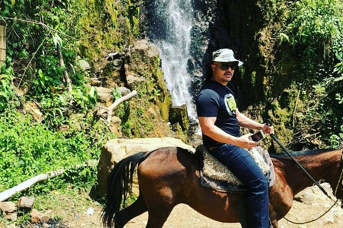Private Day Tour of Jardín with Horseback Ride and Coffee Villa from Medellin