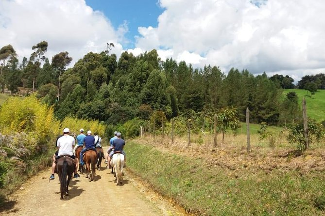 Best Horseback Adventure from Medellin