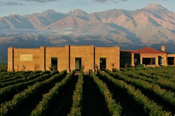 Wine Tour Experience in Uco Valley from Mendoza (full day)