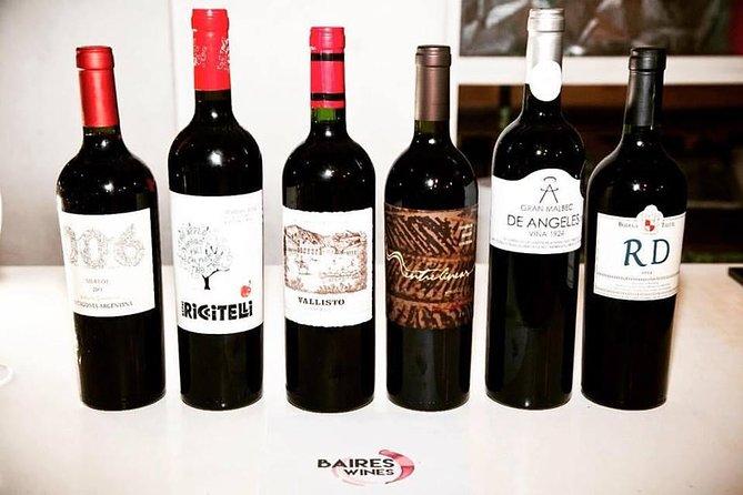Premium Wine Tasting in Buenos Aires