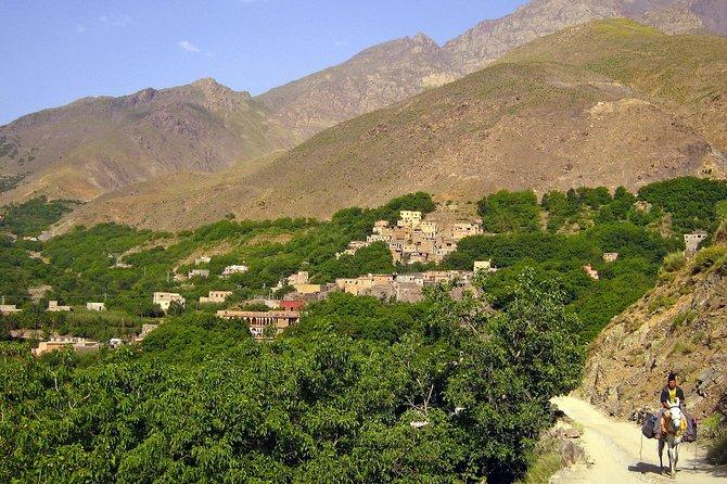 Marrakech Day Tour to Ouzoud Waterfalls