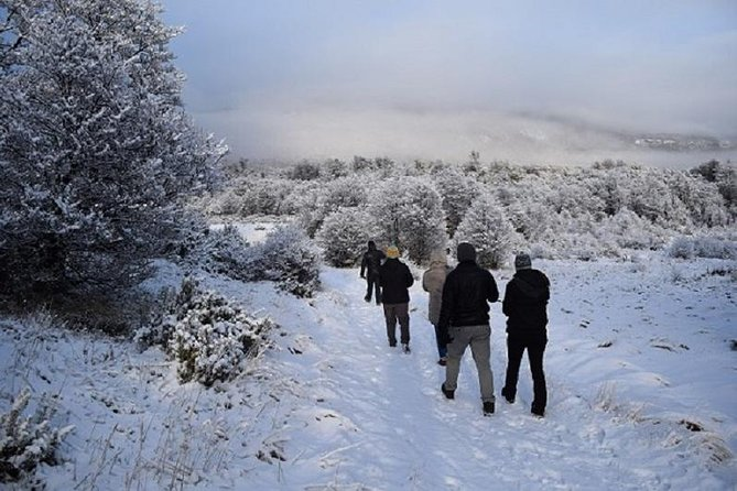 Winter Full Day: National Park plus Beagle Channel Navigation
