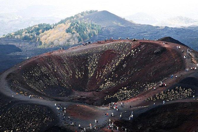 Private Tour of Mount Etna and Etna Winery Visit with