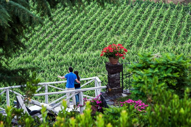 Private 7-Hour Tour of Three Etna Wineries with Tasting from Syracuse photo 8