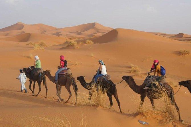 Merzouga Desert 3 Days 2 Nights Tour