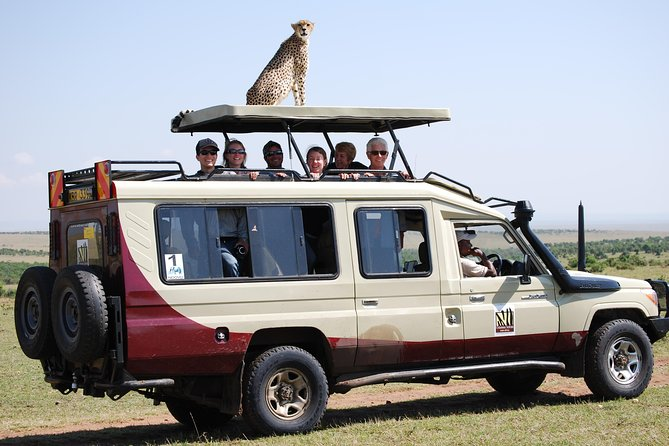 Highlights of Kenya Safari