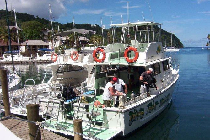 St Lucia Beginner Scuba Diving Tour photo 3