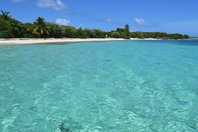 Breng een dag door op Afgelegen bewoonde eiland Icacos