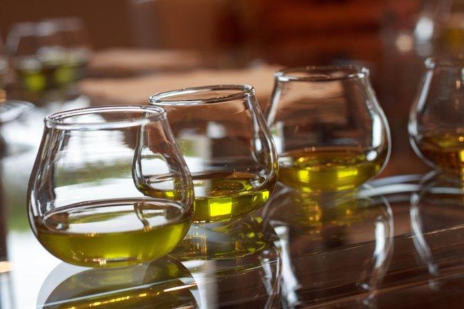 Olivenolie Plantage Lille Gruppetur fra Malaga med morgenmad og smag