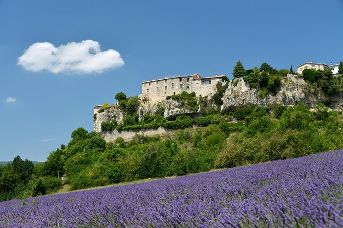 Provence Lavender Small Group Half-Day Trip