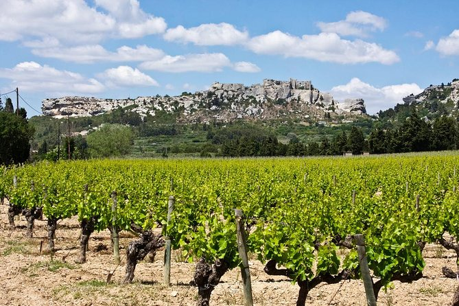 Saint-Remy,Les Baux de Provence and Carrières de Lumières Tour from Avignon