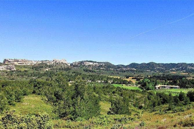 Culture and Wine in les Baux de Provence from Arles