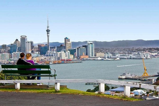 Auckland Shore Excursion: Small-Group Auckland City Tour