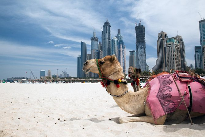 Dubai Full-Day City Tour with Lunch and Burj Khalifa