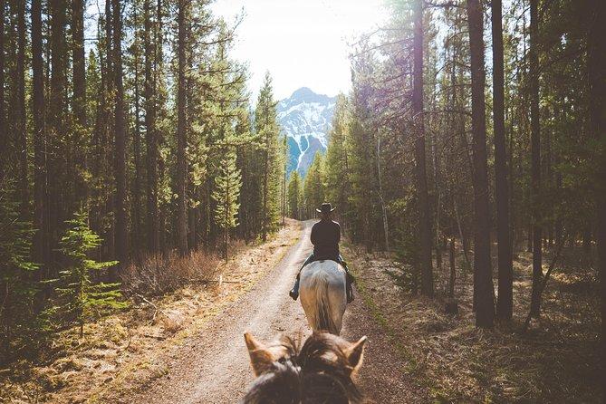1-Hour Horseback Trail Ride in Kananaskis