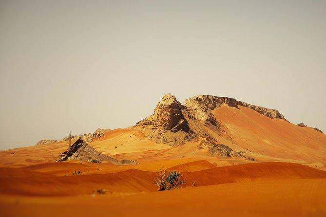 Halve dag tour Sharjah Mleiha Desert