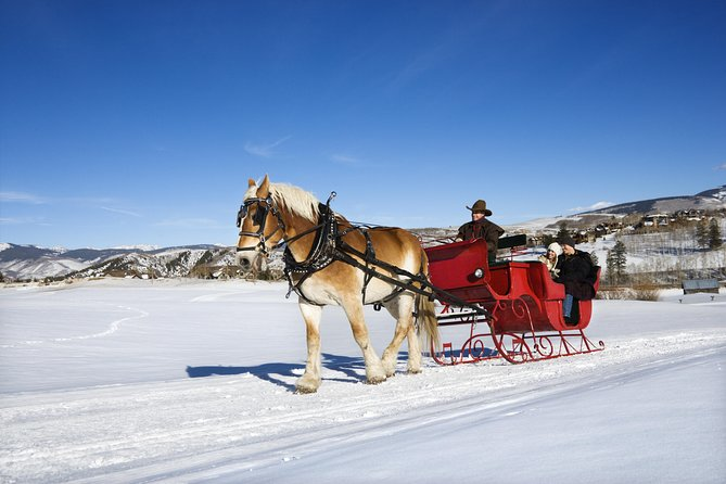 Private Horse-Drawn Sleigh Ride from Salzburg