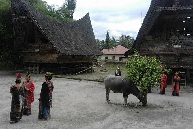 6 Day North Sumatra Highlights - Jungles Orangutans Lakes and Volcanoes