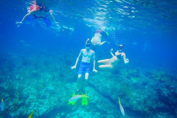 Freeport Reef Snorkelavontuur met strandpauze en winkelen