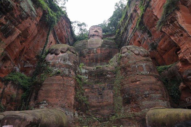 Gita privata di un giorno: base di ricerca per l'allevamento del panda gigante e il Buddha gigante di Leshan