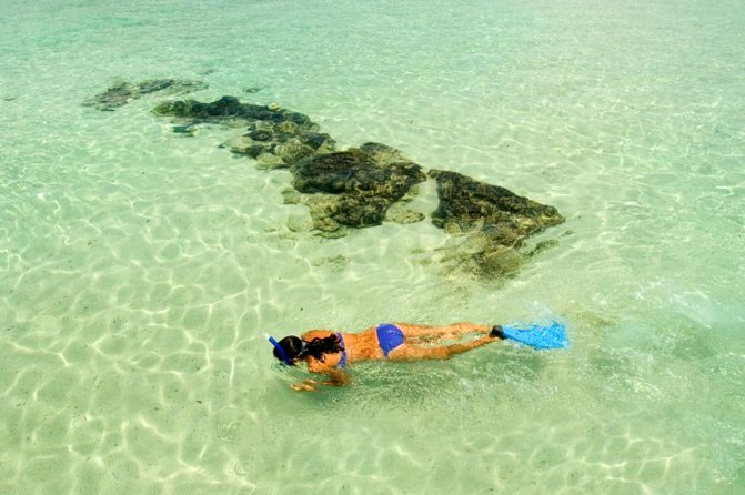 Maui South Shore Premier Kayak and Snorkel Tour from Makena Beach