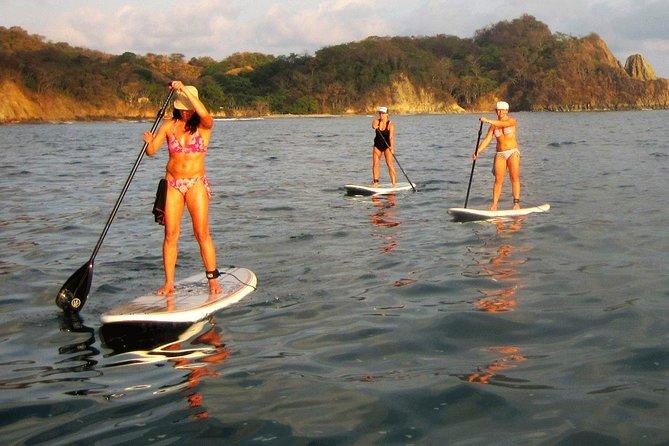 Nosara river stand-up paddleboard, mangrove, and environment watching tour