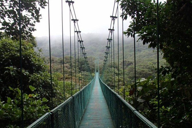 Full day zip line tour with butterfly and hanging bride near San Jose Costa Rica