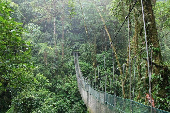 Full day hiking at Arenal Volcano and hanging brides from San Jose