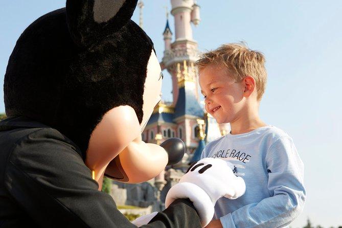 Private Transfer: Disneyland Resort Paris
