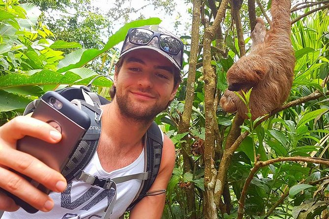 Sloth Discovery from Playa del Coco Area