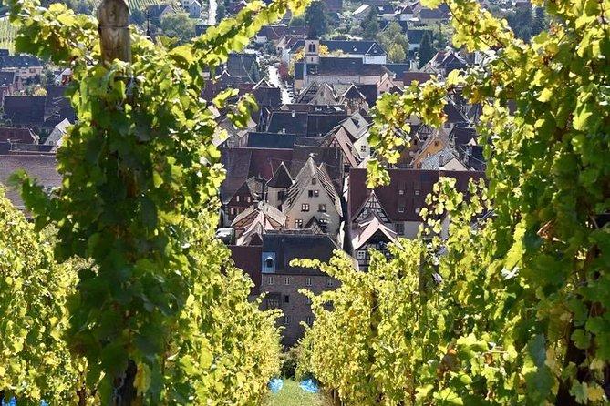 Visite privée d'une journée complète: Le meilleur de l'Alsace au départ de Strasbourg