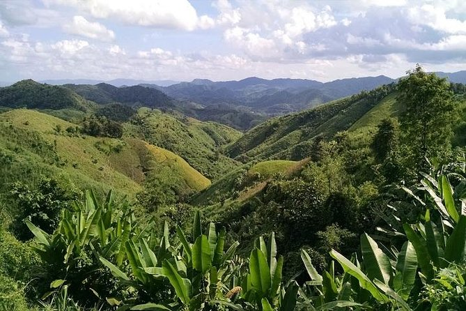 Private Tour: Chiang Rai Golden Triangle Day Trip from Chiang Mai