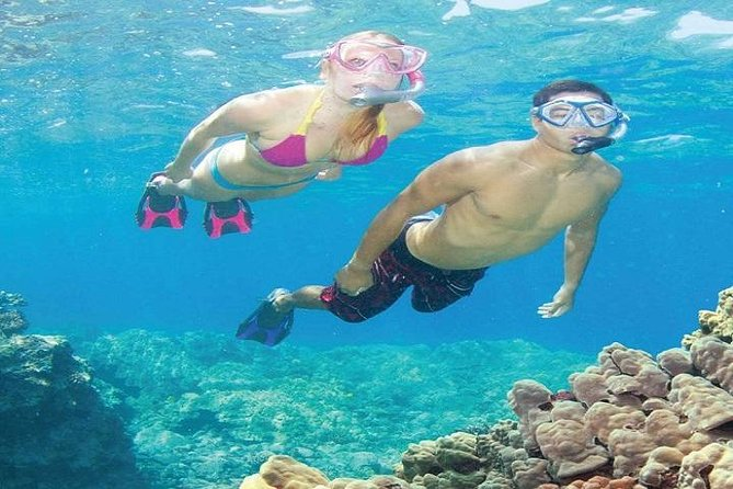 Koh Tao and Koh Nang Yuan Snorkeling Tour from Koh Samui by Speedboat