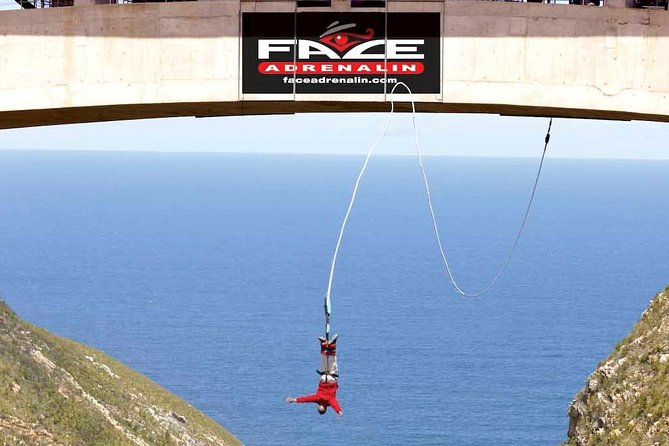3 Day Garden Route Big 5 and Bungee Tour