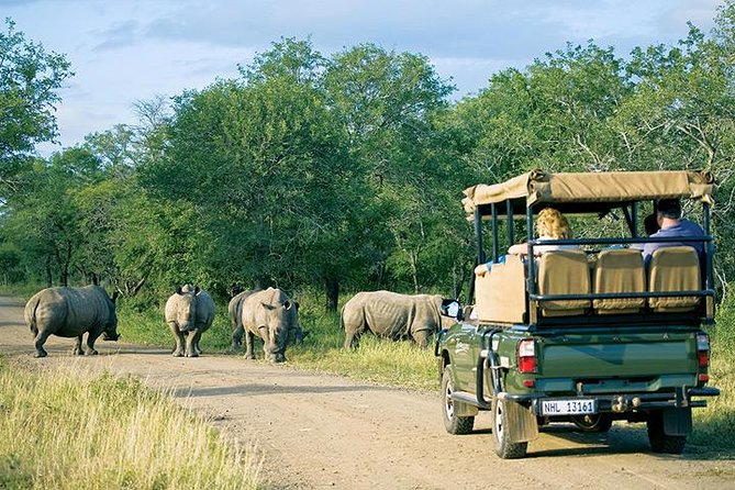 4 Day Kruger Safari: Treehouse