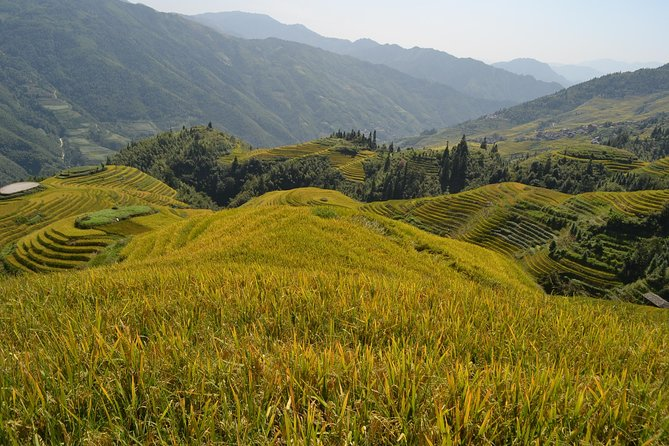 One Day Private Longshen Rice Terraces Tour Including Lunch photo 7