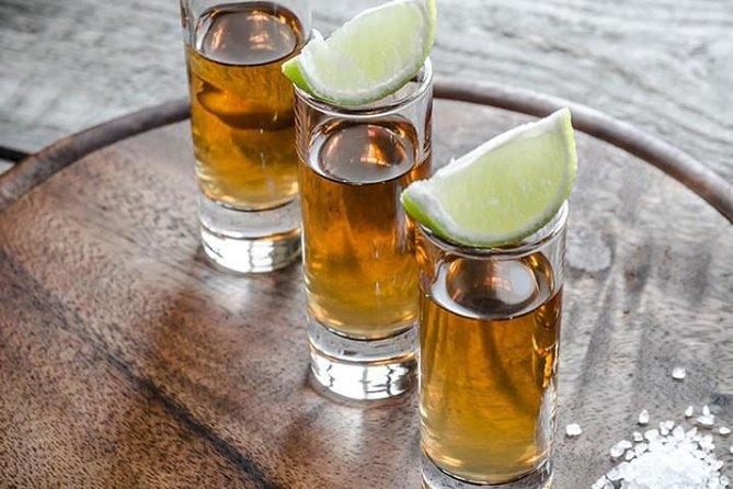 Tequila and Mundo Cuervo Distillery Tour from Guadalajara