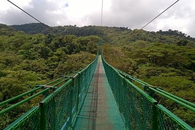 Hanging Bridges 2-hour Tour from Monteverde