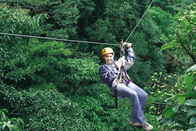 Half-Day Monteverde Zipline, Rainforest Canopy and Hanging Bridges Tour