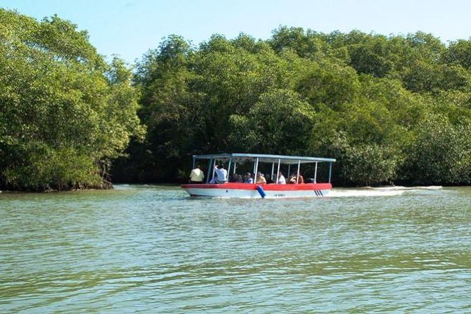 Damas Island by Boat Tour From Manuel Antonio