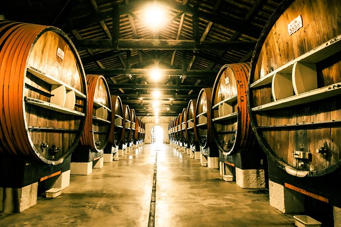 Noilly Prat Vermouth Cellar Tour and Tastings in Marseillan