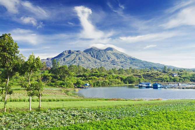 Bali Highlights Full-Day Tour with Mt Batur Volcano, Sri Batu