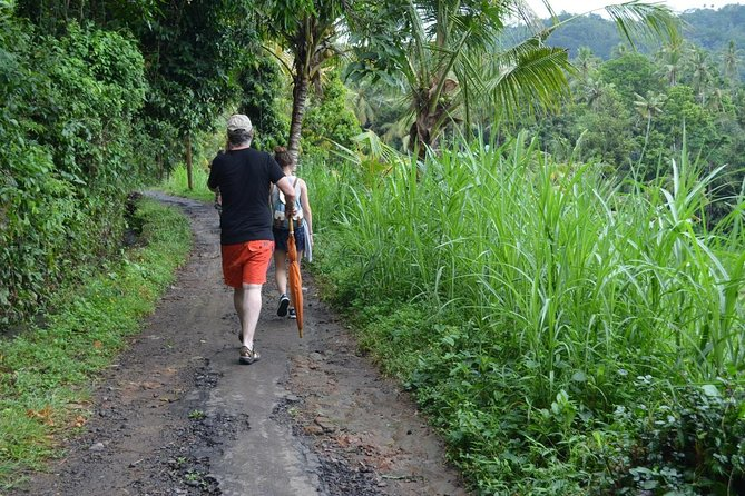 Ubud Trekking and Traditional Massage Experience