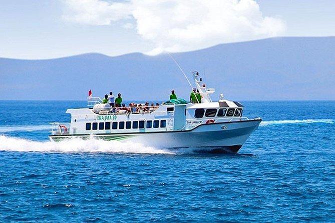 Eka Jaya Boat Transfer from Lombok to Serangan