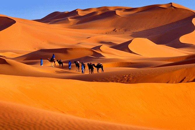 5 Days ( Desert Sahara Tour and Mount Toubkal Trek From Marrakech )